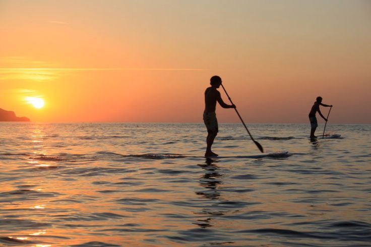 Image result for stand up paddle board